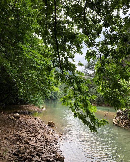 Jabal Moussa Biosphere Reserve (2/3): JabalMoussa, part of the UNESCO... (Jabal Moussa Biosphere Reserve)