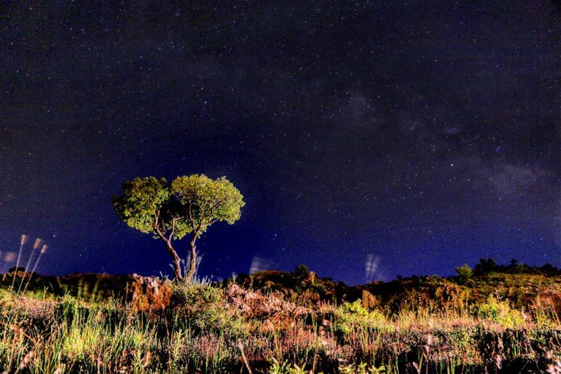 الجار قبل الدار. sergio_koliana_photography meetlebanon mylebanon ... (Zaarour Hills)