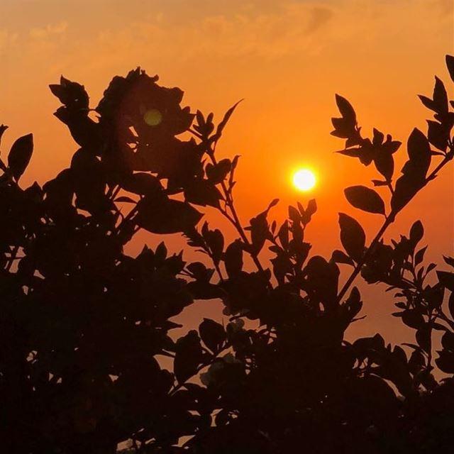 the first stab of love is like a sunset sunsetlover love calmnessinchaos... (Beirut, Lebanon)