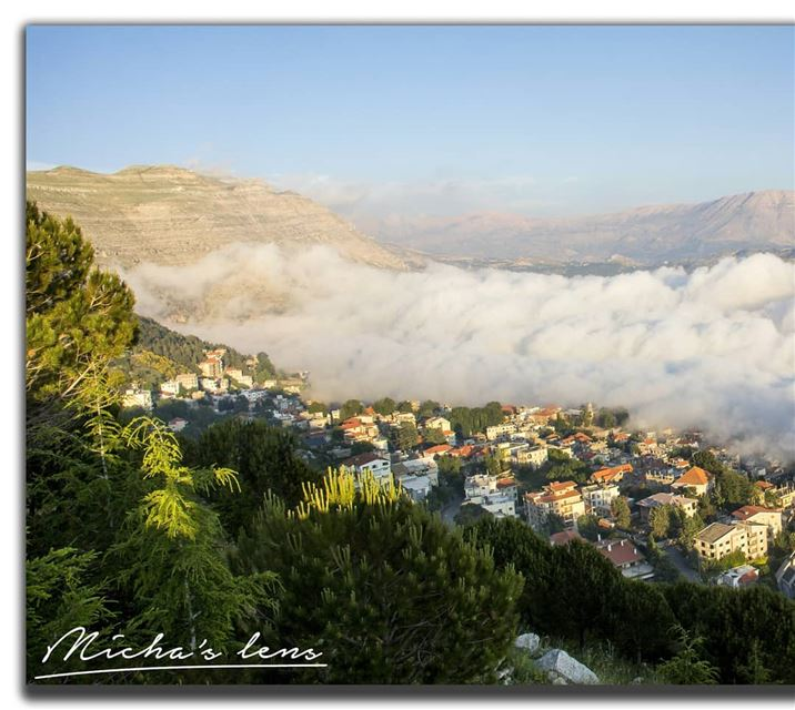 The different colors of ehden.. see my profile so u can see all the...