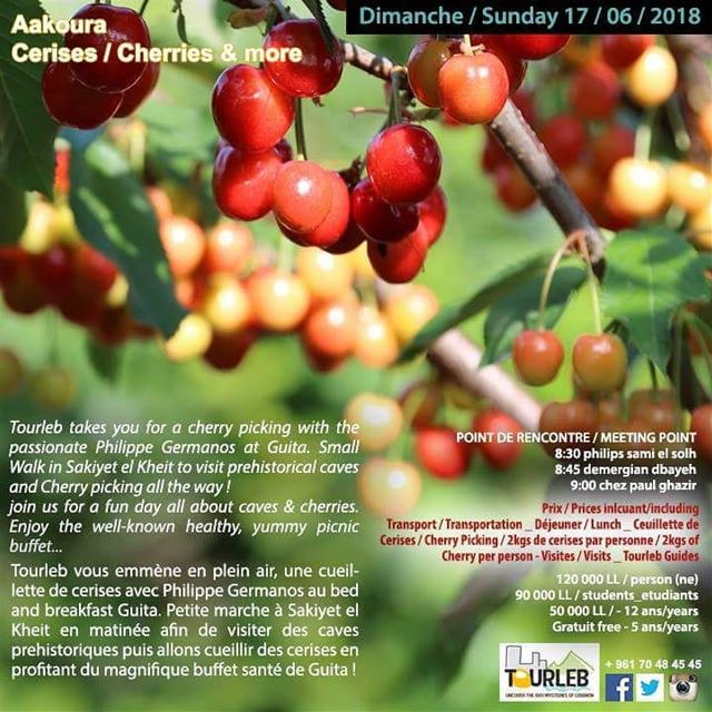 Let's cherry and eat and walk and have funnnnn !RSVP ASAP tourleb ... (Akoura, Mont-Liban, Lebanon)