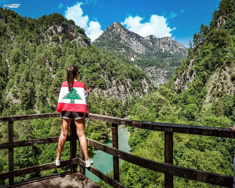 LiveLoveLebanon LiveLoveBeirut Lebanon OnePlus 📸📱 (Chouwen)