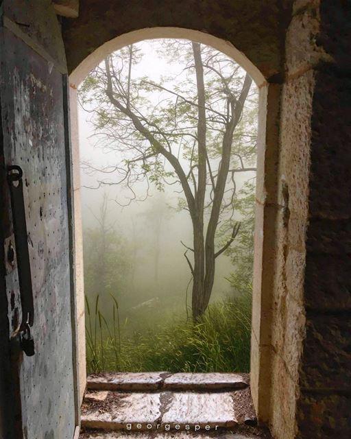 """ I am alive like you and I am standing beside you "" • Khalil Gibran •... (Bsharri, Lebanon)"