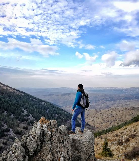 The only thing I ever wanted, the only thing I ever needed is my own way,... (Al Shouf Cedar Nature Reserve)