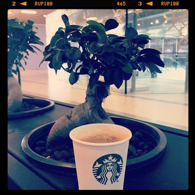 coffee cafe mmm wakeup starbucks smellcoffee ... (ABC Verdun)