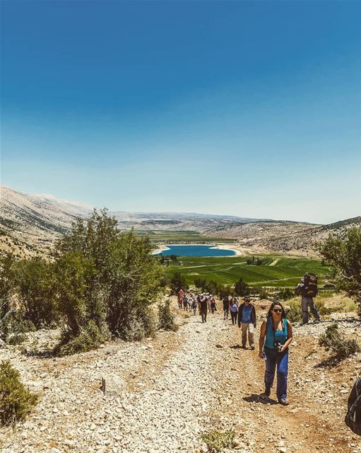 ____________________________________________________ treehugger961 ... (El Yammoûné, Béqaa, Lebanon)
