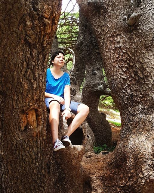In the beautiful Barouk Cedar Forest! Nature always feels like home 🌲 ... (Arz el Bâroûk)