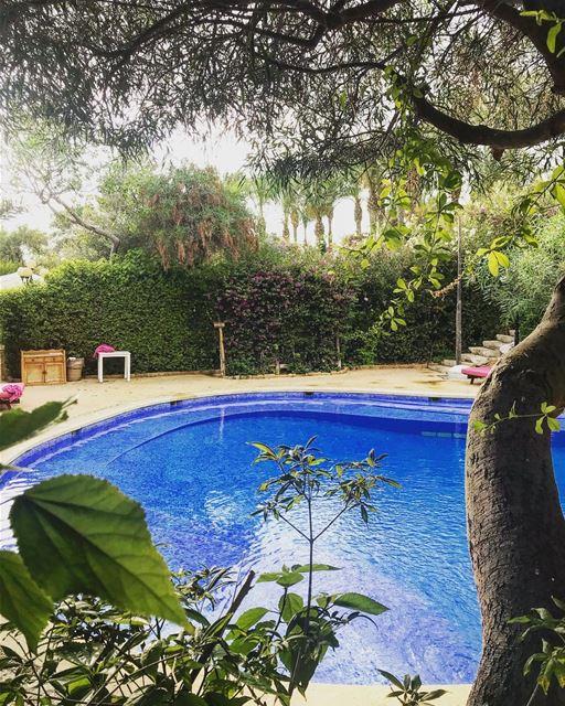Morning 😀 lebanon jbeil eddesands morning mood pool positivevibes ... (Eddésands Hotel & Wellness Resort)