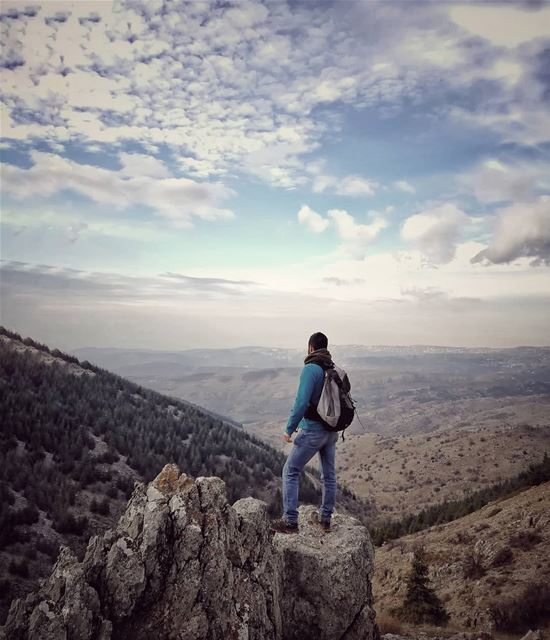 Set your spirit wild free..______________________________________________... (Al Shouf Cedar Nature Reserve)