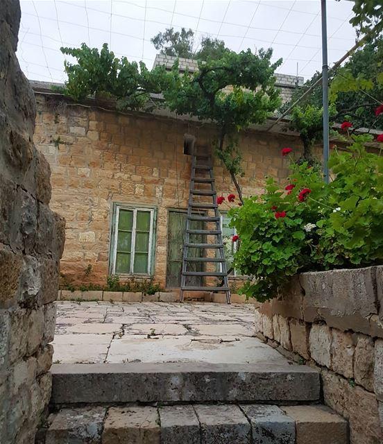 تحت العريشة سوى قعدنا سوى و قلناكرم المحبة استوى و خبى منازلنا... (Dayr Al Qamar, Mont-Liban, Lebanon)