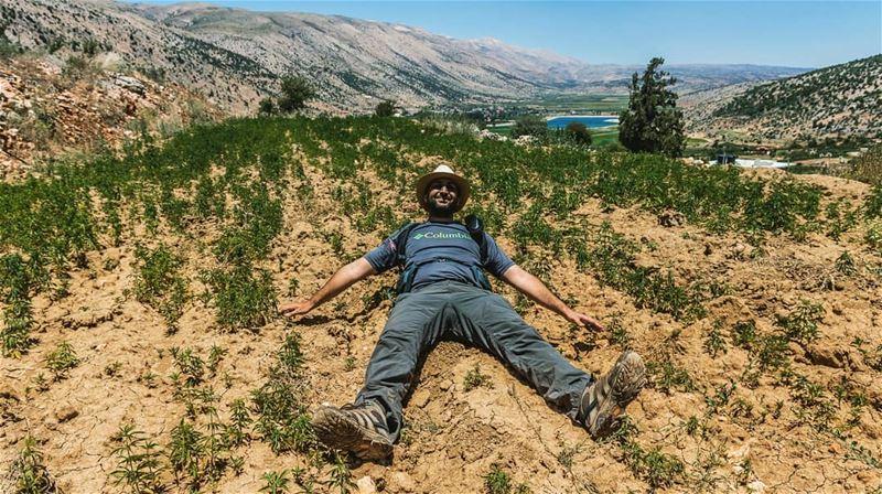 So high____________________________________________________... (El Yammoûné, Béqaa, Lebanon)