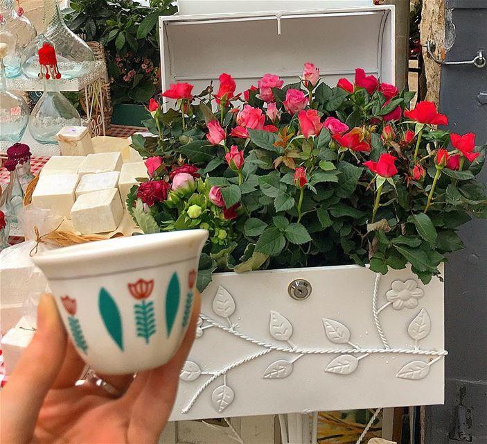 رغم المسافة كلهاقالت له بحرقة قلبامنيتي اشرب قهوة معك رد عليها بنبرة تف (El Laklouk, Mont-Liban, Lebanon)
