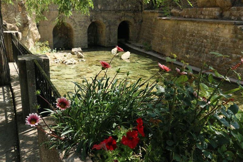 Weekend runaway to Jezzine? thisislebanon79 viewbug ... (Jezzîne, Al Janub, Lebanon)