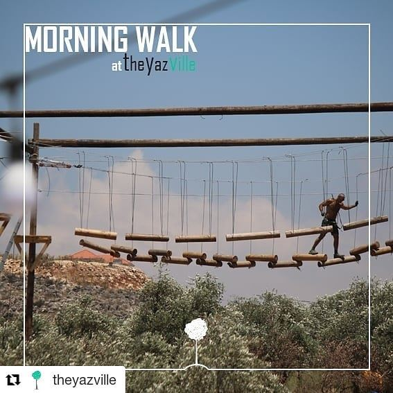 Repost @theyazville (@get_repost)・・・Early Morning Walk @theyazville ...