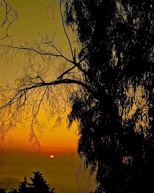 visitlebanon photography travel travelphotography sunset sunset🌅 ... (Mountain Home, Aley Lebanon)