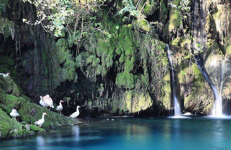 A piece of heaven on earth 🍀💦.. lebanesefood lebanon chouf ... (Baakline, Mont-Liban, Lebanon)