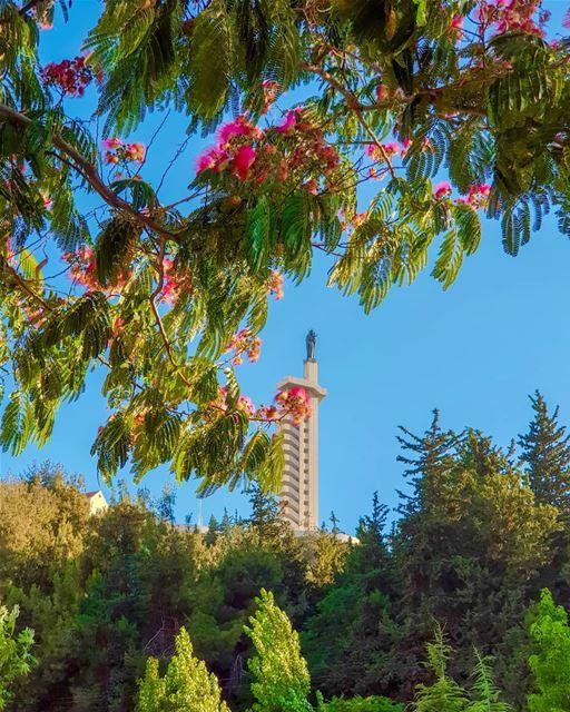 Grateful, i am so Grateful ... GoodMorning... (Zahlé, Lebanon)