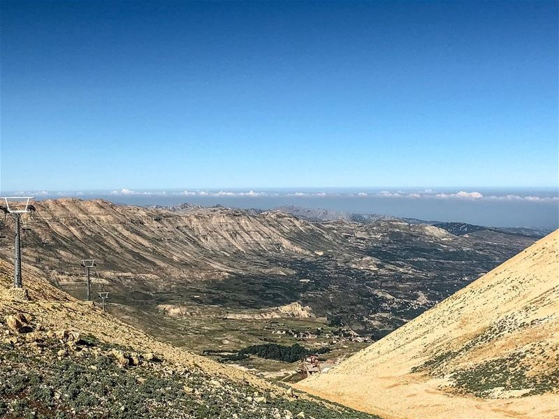 Take a breathTrust the path God has set before you ☘️............. (Cedars of God)