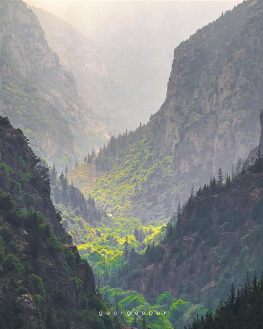 Qadisha Valley • Lebanon 🇱🇧..... photoshop  artofvisuals ig_color ... (Kadisha Valley)