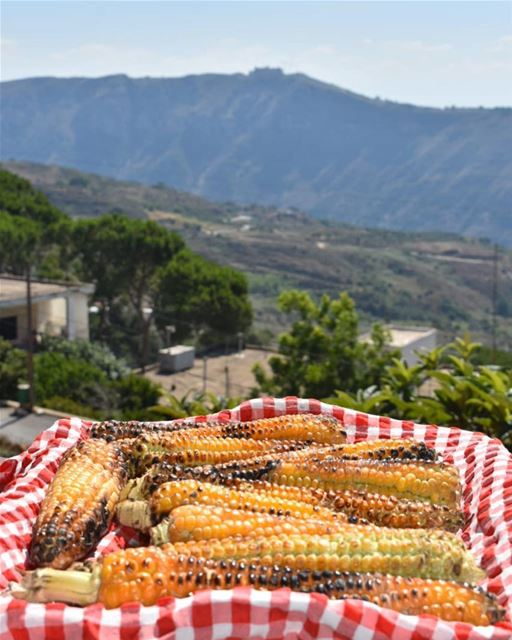 A light wind swept over the corn,And all nature laughed in the sunshine -... (El Qlaïaâ, Al Janub, Lebanon)