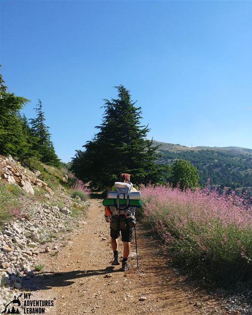 Home sweet home 🗻 myadventureslebanon lebanon naturelove outdoorlife...