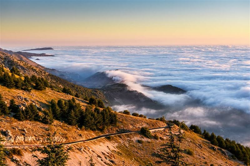 """The sea of the clouds"" 