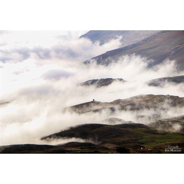 cedars livelovecedars cedarsofgod clouds cloudporn livelovelebanon ...