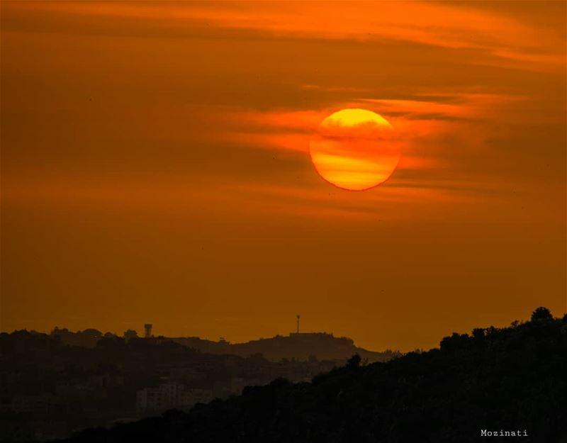 Beautiful things don 't ask for attention .. 😍============================ (Rihâne, Al Janub, Lebanon)
