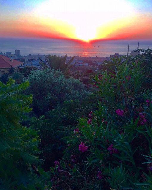 My lebanon .. mylebanon lebanon lebanon_hdr saida livelovebeirut... (Saïda, Al Janub, Lebanon)