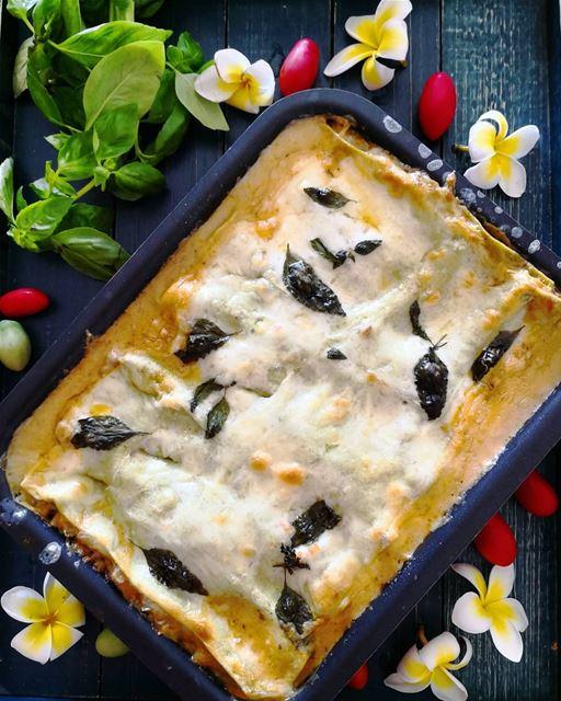 Super nutritious lasagna for my Garfields 🥘🍅🌶️🥕💕... lasagna ...