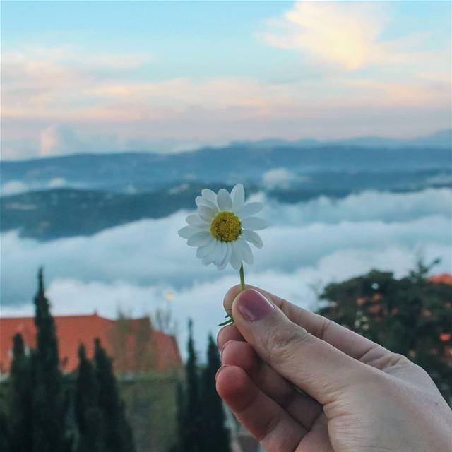 ويا جبل الشيخ .. يا قصر الندي 🌼⛰☁️ لبنان فيروز