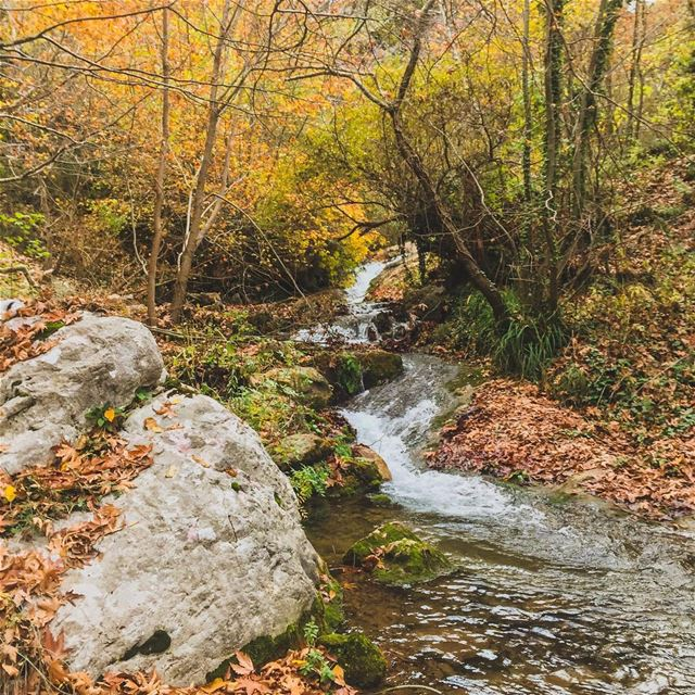 Autumn vibes!..... natgeoshot natgeotravelpic liveoutside ... (Lebanon)