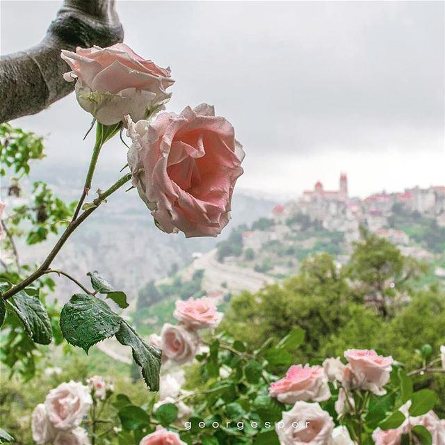 The Village of Bsharri • Lebanon 🇱🇧..... photoshop artofvisuals... (Bsharri, Lebanon)