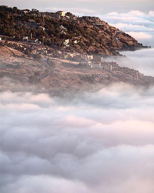 In white forever ... (Faraya, Mont-Liban, Lebanon)