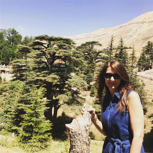 haveagreatday  haveaniceweekend  cedars  cedarsoflebanon  cedarsofgod ... (Cedars of God)
