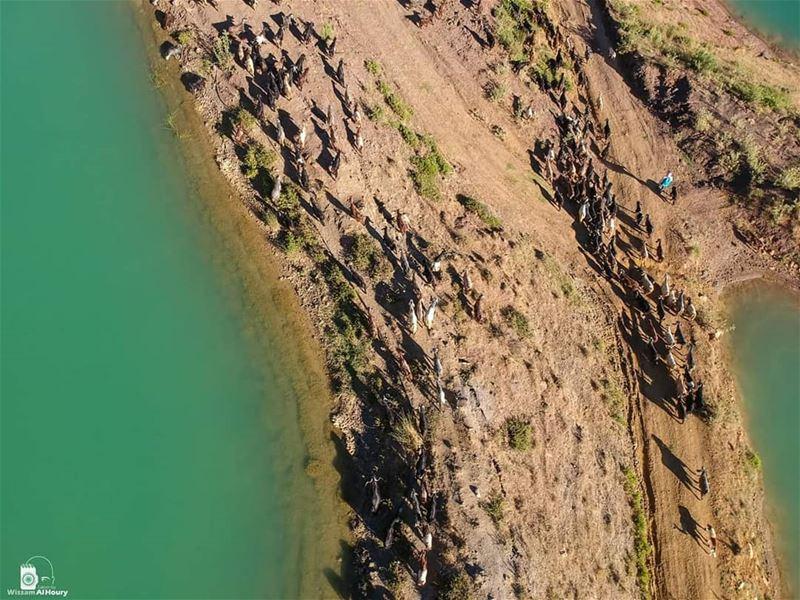 aerialphotography aerial dronefly dronephotage takenbywissamalhoury... (Mount Lebanon Governorate)