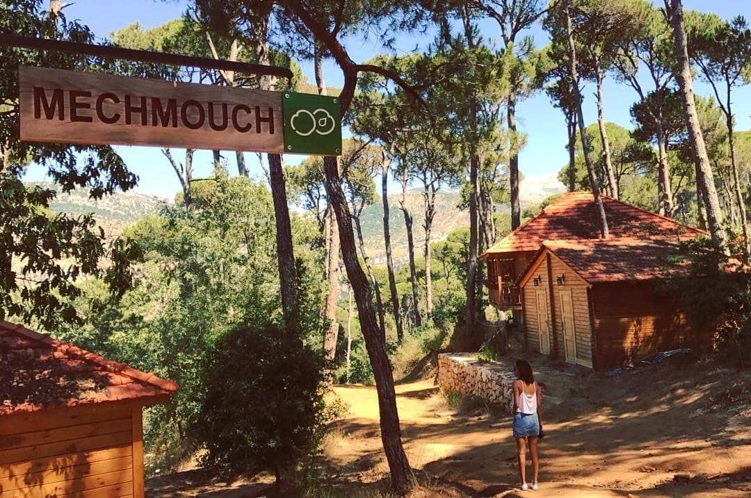 MECHMOUCH 🍑🏡 Photo Credits go to @jixooo 📸👌 LaMaisonDeLaForet Nature...