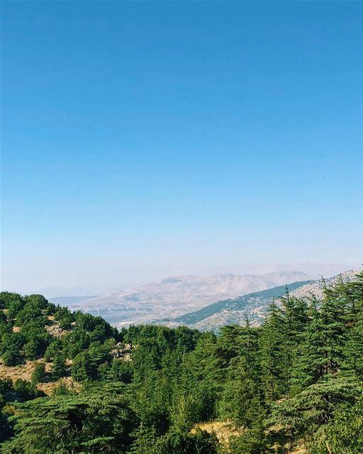 livelovebeirut livelovelebanon insta_lebanon livelovebarouk ... (Bâroûk, Mont-Liban, Lebanon)