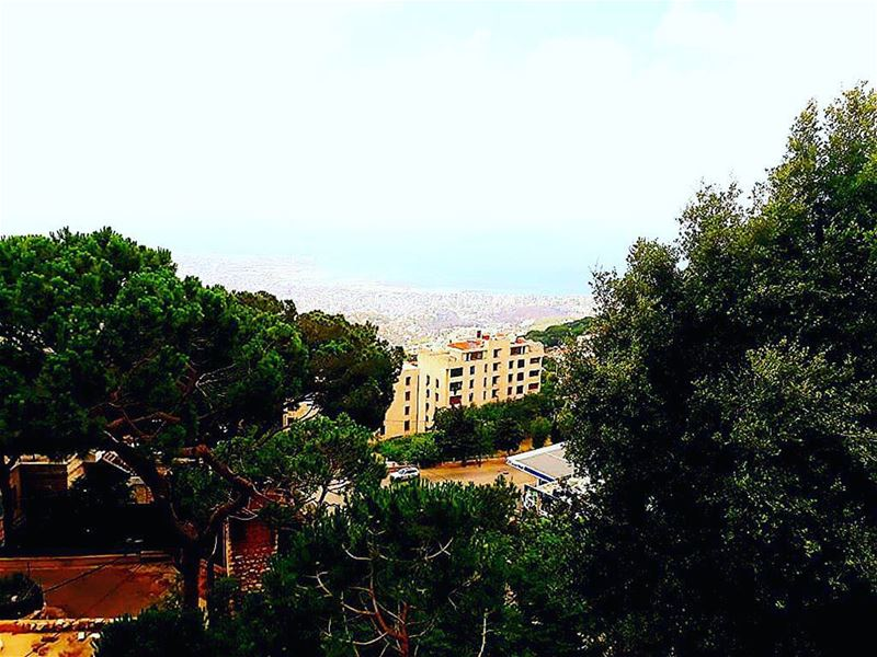 Just a tree base where you can see all jounieh !!!.Photo by @am__.asmar ❤