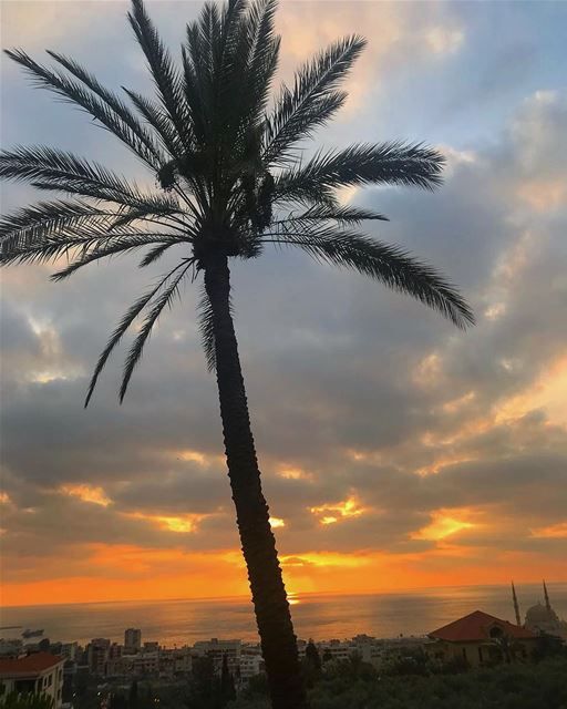 U can see i'm in love with sunset 🌅 .. sunset lebanon picoftheday ... (Saïda, Al Janub, Lebanon)