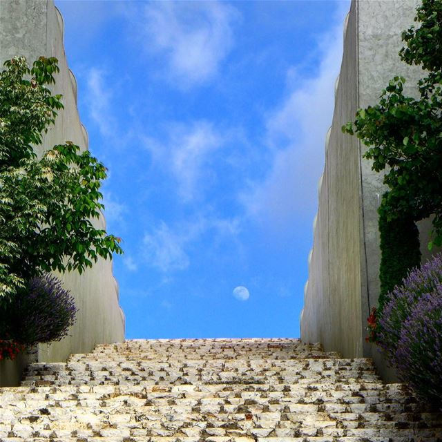 Stairway to the moon 🌜🌛🌙.. museum  resistance  peace  moon  stairway... (Mleeta Tourist Landmark)