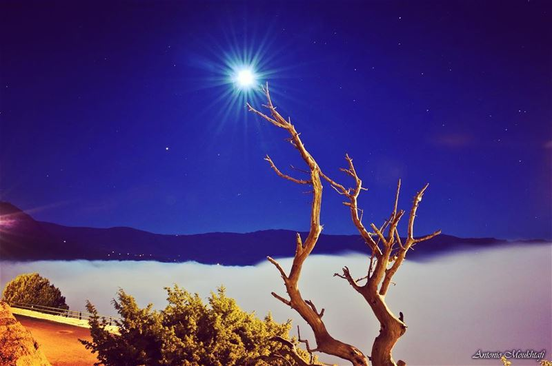 "Moonlight drowns out all but the brightest stars. ""J.R.R. Tolkien"" ehden ... (Ehdène, Liban-Nord, Lebanon)"