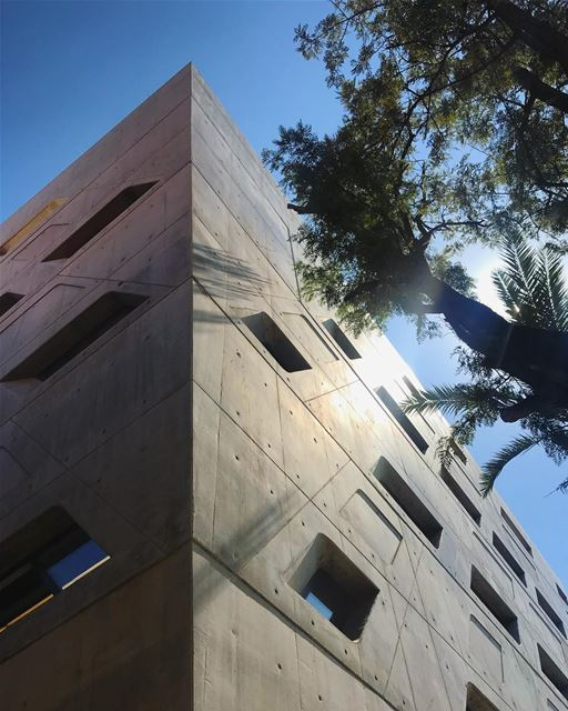 Zaha. (American University of Beirut (AUB))