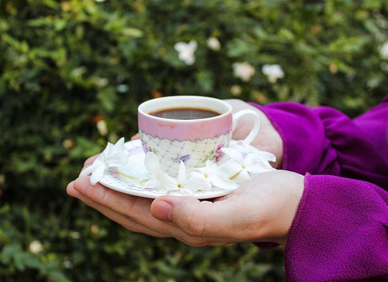 ينبت من أحاديثك ورداً يشعرني بالسلام...... قهوتي قهوة_الصباح روقان تصوي