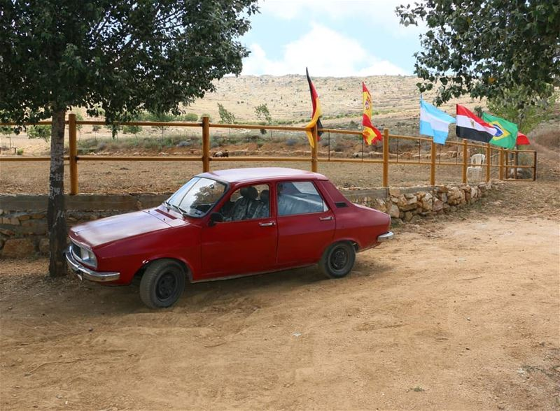 World Cup is a great occasion in all over Lebanon, even in rural areas.... (Jezzîne, Al Janub, Lebanon)