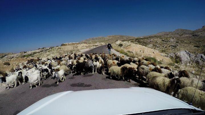 TimeLapse RoadTrip ... (Lebanon)