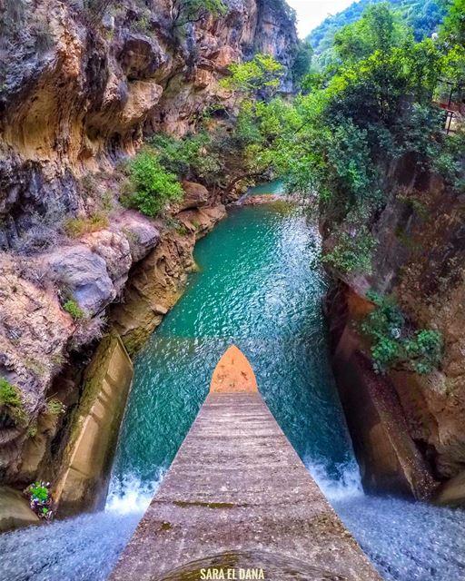 My kind of waterslides! 🎢💦 (Yahshush, Mont-Liban, Lebanon)
