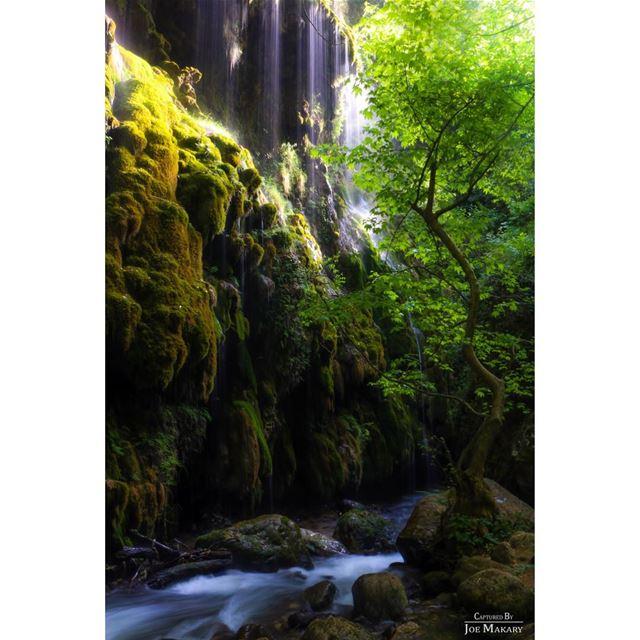 naturelovers river nature nationalart longexposure beautifullebanon ...