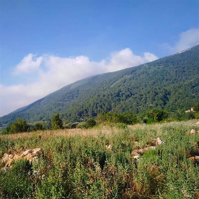 منظر عكّاري..💚————————————————— green nature mountains village sky ... (`Akkar, Liban-Nord, Lebanon)