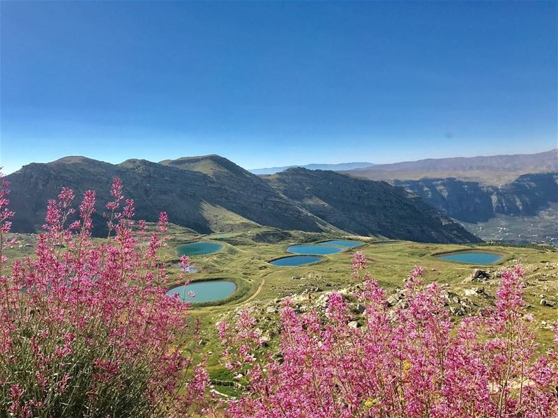 Paradise found ✨💓•••••••••••••••• naturalcolors ... (Akoura, Mont-Liban, Lebanon)